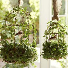 Ivy Bird Houses