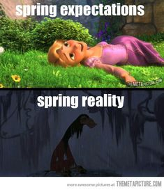 Spring: expectations vs. reality…