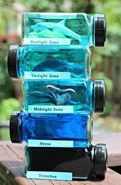 Ocean Zones for Kids: Layers of the Sea Science Project Forget about dioramas! Teach kids about ocean zones, habitats and marine animals with this ocean layers in a jar activity! FUN STEM craft for kids Ocean Projects, Science Projects For Kids, Projects For School, Fun Projects, Preschool Science, Science For Kids, Summer Science, Science Week, Preschool Centers