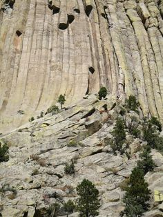 Rock climbers ascending Devils Tower, WY