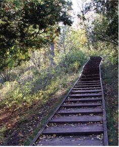 hiking_trail
