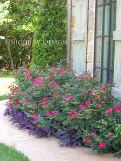 Easy, simple statement maker.  Knock Out roses with purple heart. Bam! l Unique by Design.....entrance
