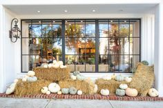 Trick or treat from MONC XIII!  Happy Halloween from our festive fall scene, courtesy of Sag Harbor Florists.