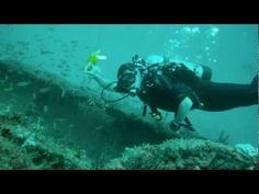 Wreck Trek Drift Dive in Fort Lauderdale Florida - http://www.florida-scubadiving.com/florida-scuba-diving/wreck-trek-drift-dive-in-fort-lauderdale-florida/