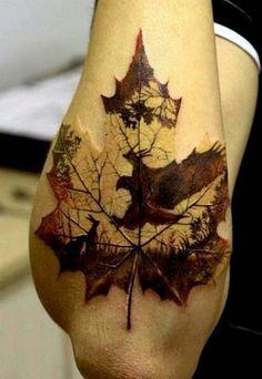Nature on leaf