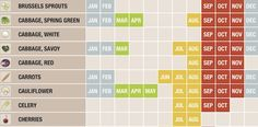 via Fast Company: Seasonal Food Calendar