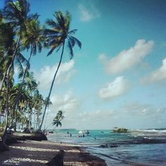 Localizada em Tamandaré (PE), a Praia dos Carneiros ainda é selvagem e encantadora. Tem como uma de suas principais atrações a Capela de São Benedito, construída no século XVIII. Foto: @tatty_81
