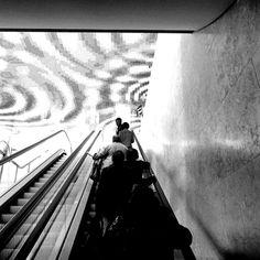 come ninfee...   bnw_captures noirlovers jornalistasdeimagens subway su