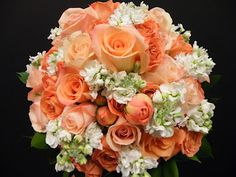white stock, peach and coral roses with isralei ruscus bridal bouquet. Bridal Bouquet Coral, White Wedding Bouquets, Bridal Flowers, Flower Bouquet Wedding, Purple Calla Lilies, Coral Roses, Peach Flowers, Blue Delphinium, Modern Wedding Flowers