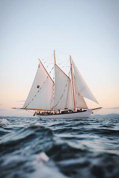 🖤 awesome Tagged with adventures beach beaches ocean sailboat sea summer Sail Away, Tall Ships, Sailing Ships, Sailing Boat, Travel Inspiration, Sunday Inspiration, Creative Inspiration, Around The Worlds, Ocean