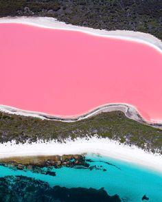 Salty Wings — West Australian wonders✨  .  .  #saltywings...