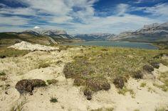Talbot Lake Jasper National Park www.glutenfreetravelette.com