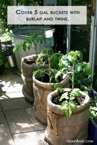 DYI covering 5 gallon buckets with burlap and twine! DYI covering 5 gallon buckets with burlap and twine! The post DYI covering 5 gallon buckets with burlap and twine! appeared first on Pflanzen ideen. Veggie Gardens, Outdoor Gardens, Outdoor Pots, Container Gardening, Gardening Tips, Organic Gardening, Vegetable Gardening, Bucket Gardening, Balcony Gardening