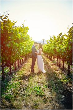 A beautiful winery wedding on a budget in California!