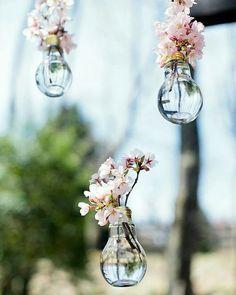Durun! Artık ışık vermeyen, eskimiş, bozulmuş ampüllerinizi atmayın. Evinizdeki eski yapay çiçeklerle birlikte ne kadar da estetik dekorasyon ürünleri ortaya çıkarılmış. Hayal gücüyle eski olsun, basit olsun tekrar kullanılabilir hale getirilebilir! . . . .  #wedding #engagement #weddingorganization #düğün #düğünorganizasyonu #düğünhazırlıkları #fotoğraf #photography #fotoğrafköşesi #photobooth #natural #flower #background #arkaplan #decor #decoration #weddingdecoration #chic #simple #diy… Budget Wedding, Diy Wedding, Rustic Wedding, Wedding Flowers, Wedding Venues, Wedding Planning, Dream Wedding, Wedding Hacks, Decor Wedding