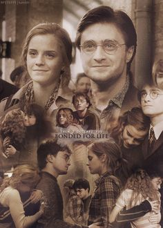 trendy funny harry potter stuff daniel radcliffe - Famous Last Words Harry Potter Hermione, Harry Potter Tumblr, Harry Potter Quotes, Harry Potter Love, Harry Potter Universal, Harry Potter World, Draco, Hermione Granger, Harmony Harry Potter