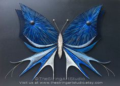 String art butterfly   Blue butterfly   Nails and strings art   Butterfly string art   String art butterfly
