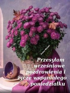 Plants, Sweet Home, House Beautiful, Plant, Planets