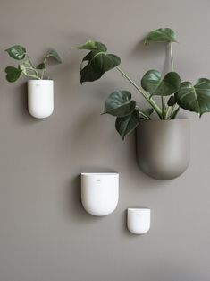 Stylish ceramic wall pot from DBKD for your plants and flowers. Decor, Beige Walls, Steel Lighting, Interior, Kitchen Mood Board, Wall, Home Decor, Inspiration, Modern Interior
