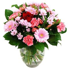 Clare Florist One Love Fresh Flower Bouquet - Single Red Rose with Pink Roses, Carnations and Germini * Check out this great product. (This is an affiliate link) #PlantsSeedsandBulbs