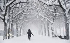 Winter is here: The worst winter storms and blizzards around the world (PHOTOS) Friday, February 8th, 2013   http://www.globalpost.com/photo-galleries/planet-pic/5750241/winter-here-the-worst-winter-storms-and-blizzards-around-the-world-photos