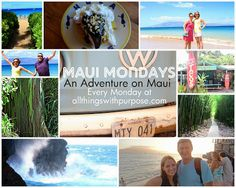 Maui Mondays: Floral and Fauna - All Things With Purpose