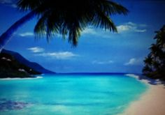 US Virgin Islands - St.  Thomas -  crystal clear water and white sand beach...Magens Bay