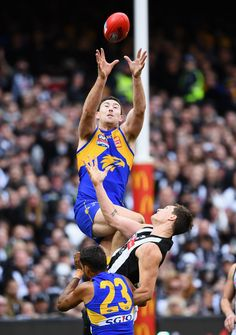 Jeremy McGovern Photos - Jeremy McGovern of the Eagles marks during the 2018 AFL Grand Final match between the Collingwood Magpies and the West Coast Eagles at Melbourne Cricket Ground on September 29, 2018 in Melbourne, Australia. - 2018 AFL Grand Final - West Coast vs. Collingwood