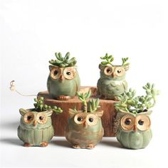 Encontrar Más Maceteros de Plástico Información acerca de USEBER Pequeño Búho en forma de Macetas De Cerámica Mini Suculentas Ollas Creativas 5 unid/set Casa/Jardín/Decoración de La Oficina Macetas de flores, alta calidad flower pot, China decorative flower pots Proveedores, barato succulents pots de Useber Store en Aliexpress.com