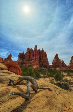 Chesler Park, Canyonlands National Park #Utah