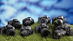Buying Guide: Best Canon DSLR: 8 reviewed and rated