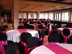 Google Image Result for http://www.chaircoversoflansing.com/ChairCovers/images/University%2520Club%2520Black%2520%26%2520Fuchsia.jpg