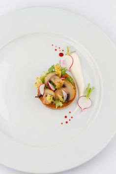 Mushrooms , Toast, Crème Fraiche, Beetroot-Couli #plating #presentation