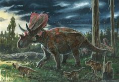 ☆ Pentaceratops sternbergii by Tuomas Koivurinne