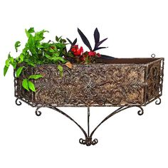 Highlight a patio, porch, or entryway wall, or bring the lush look of your garden indoors with our fashionable iron wall planter.  It features a trapezoid-shaped frame with scrolling patterns througho...