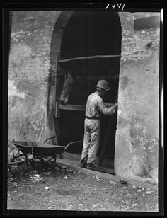 Man and horse in stall, New Orleans or Charleston, South Carolina