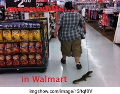 only in wal-mart