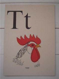 Gammal bokstavsplansch bokstaven T Tupp skolplansch på Tradera.