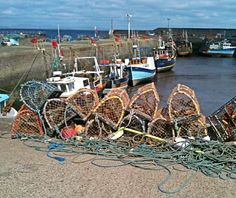 Port Seton harbour, a cold, grey May day! Photo by S Robinson. May Days, Edinburgh, Childhood Memories, Scotland, Cold, Sea, Landscape, Natural, Landscaping