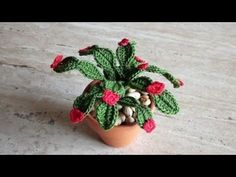 Tutorial #Cactus pendente #crochet #uncinetto #aloe #piantegrasse #succulent - YouTube Miniture Things, Crochet Flowers, Cactus Plants, Free Pattern, Succulents, The Creator, Crochet Patterns, Knitting, How To Make