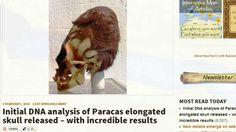 Nephilim! Initial DNA Results of Elongated 'Paracas Skull' Has Incredible Results!