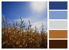 Corn Field Palette