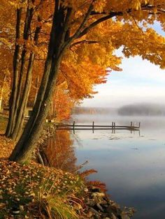 Beautiful pic of a fall scene by a lake with the beautiful fall foliage on the tree. Fall Pictures, Pretty Pictures, Landscape Photography Tips, Nature Photography, Beautiful World, Beautiful Places, Beautiful Scenery, Fall Vacations, Autumn Scenes