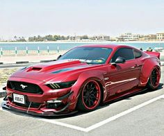 Wide Body Stang  Z_litwhips