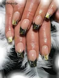 Image result for pet nails