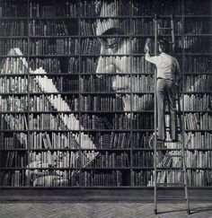 interesting idea, i bet the librarian would hate to rearrange them back in order.