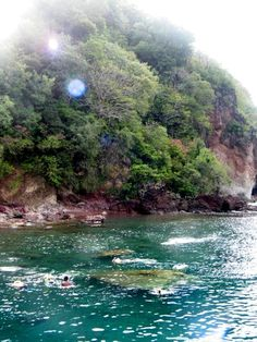 Dominica looks like Champagne Beach where we snorkeled and felt warm water coming from fissures