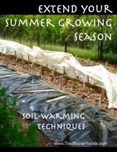 Extend Your Growing Season at Traditional-Foods.com