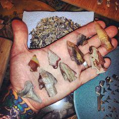 Shark's and arrowheads.
