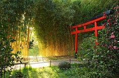 La bambouseraie d'Anduze Dans le Gard, entre Nimes et Alès